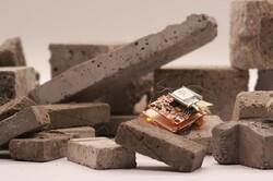 تولید ربات حشرهای سریع با قابلیت آوارنوردی