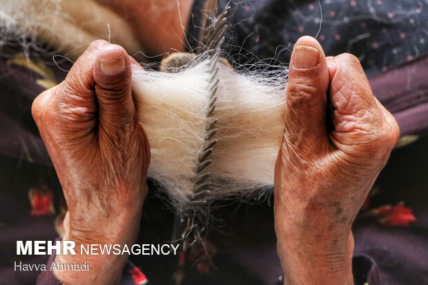 پشم های گوسفند بیشترین کاربرد را در منطقه سوادکوه دارد.