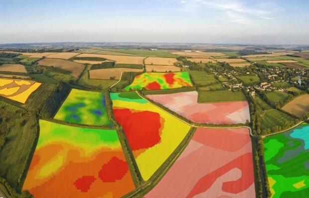 نقشه شاخصهای سلامتی گیاه با استفاده از تصاویر ماهوارهای تهیه شد