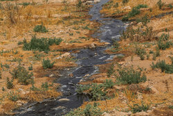 رهاسازی فاضلاب کشتارگاه بجنورد در محیط زیست تخلف است