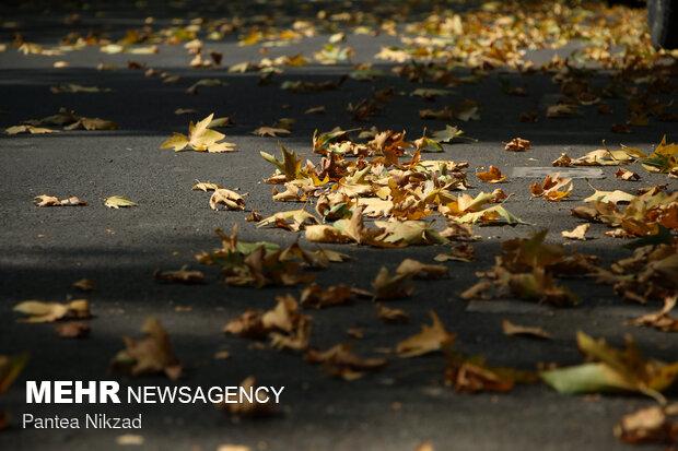 Early autumn in Tehran