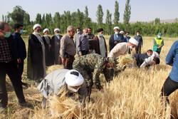 حضور امام جمعه بجنورد بین کشاورزان/ پرداخت زکات موجب برکت میشود