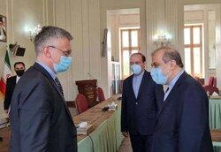 رایزنی مشاور ارشد ظریف با نماینده ویژه سوئد در امور یمن