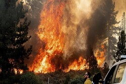 Over 300k acres burned across 6 states in US: Report