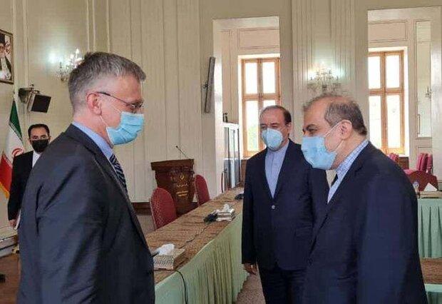 Iran, Sweden confer on termination of crisis in Yemen