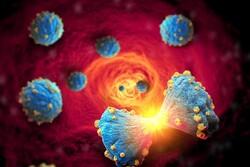 مقابله با انتقال سلولهای سرطانی به جریان خون با نوعی پروتئین