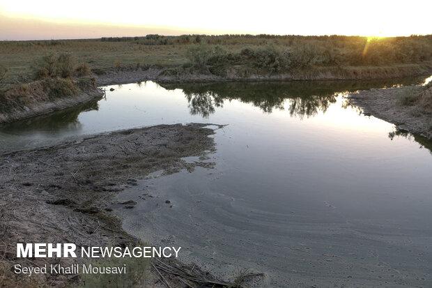 شناسایی حلقههای مفقوده زیستبوم فناوری حوزه آب