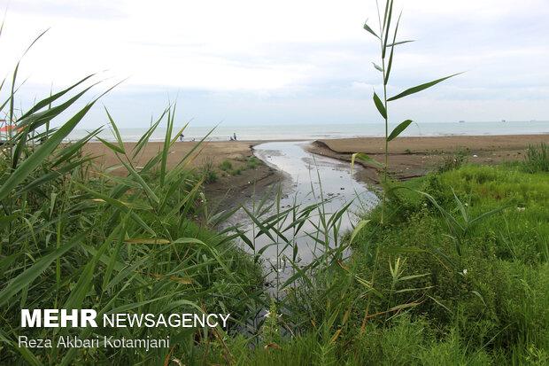 آبیاری باغات حاشیه رودخانه اهر با پساب تصفیهخانه فاضلاب