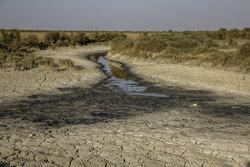 هیئتی از مسئولان چند وزارت به خوزستان سفر میکنند