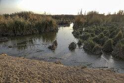 شرکت نفت دخل و تصرفی در آب هورالعظیم ندارد