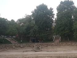 سرچشمه «نگین آبی» خرمآباد خشکید/ خداحافظی آب با بنای ساسانی