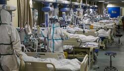 تسجیل 250 حالة وفاة جديدة بفيروس كورونا