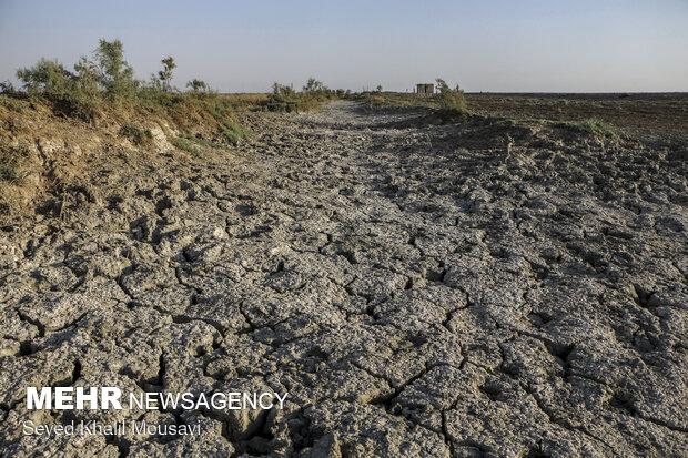 انتقال آب قطعاً جلگه خوزستان را نابود می کند