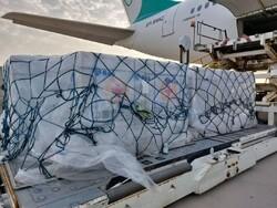 وصول الشحنة السادسة من لقاح كورونا إلى البلاد