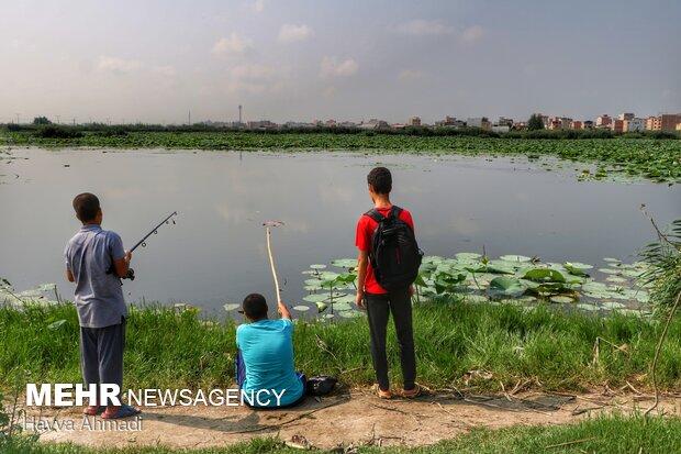 ماهیگیری از تفریحات گردشگران است.