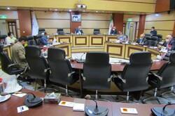 ۸۰ هزار تن نهاده دامی برای زمستان عشایر استان سمنان نیاز است