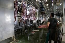 صدور رأی ابطال قرارداد واگذاری کشتارگاه «جونقان» به بخش خصوصی