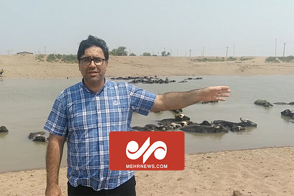 آب به رودخانه نیسان در منطقه رفیع رسید