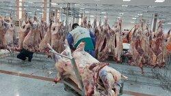 قیمت گوسفند زنده برای محرم اعلام شد/ کیلویی؛ ۶٠ هزار تومان