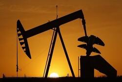 Petrol yeni haftaya yükselişle başladı