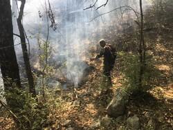 مهار آتش در جنگل های گالیکش