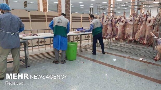 قربانی خادمیاران رضوی در کرمانشاه
