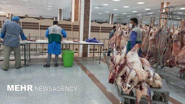 قربانی ۱۱۰ گوسفند و توزیع در بین نیازمندان توسط خادمیاران رضوی کرمانشاه