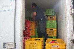 ترخیص محموله بزرگ مرغ وارداتی از بندرشهیدرجایی در کمتر از ۲۴ ساعت