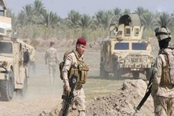 Chief ISIL terrorist nabbed in southern Baghdad