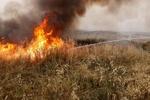 بالن های آتشزا فلسطینیها بلای جان صهیونیستها