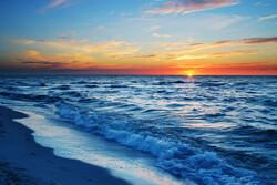 «لایحه حفاظت از تنوع زیستی دریای خزر» تصویب شد
