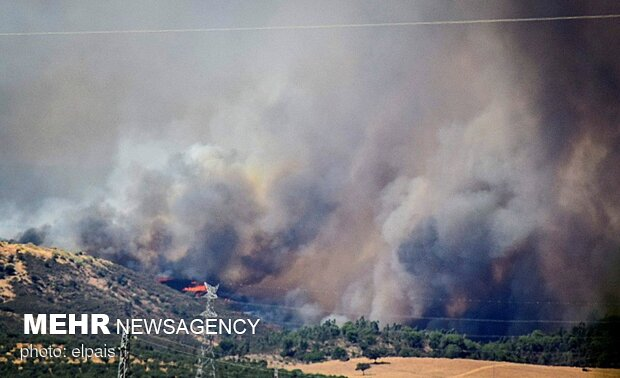 ترکی کے جنگلات میں آگ لگنے کے نتیجے میں 3 افراد ہلاک