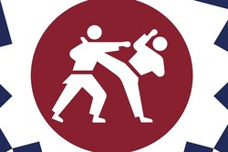 با کاراتهکاران ایرانی در المپیک آشنا شوید