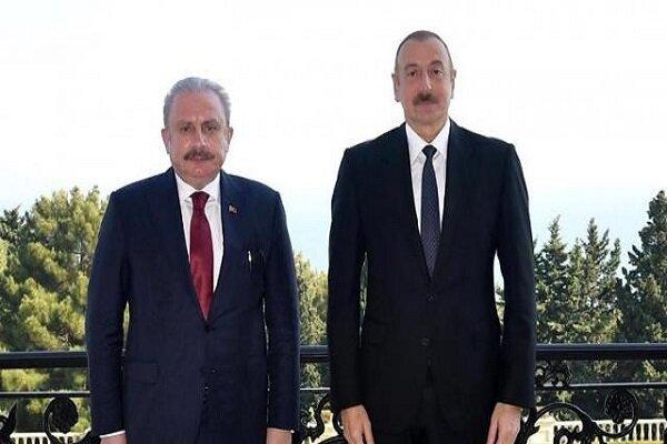 Aliyev, TBMM Başkanı Şentop'u kabul etti
