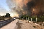 Antalya Manavgat'ta büyük orman yangını