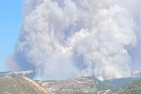 وقوع آتش سوزی بزرگ در جنگل های شمال لبنان