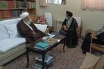 وزیر اطلاعات با مراجع عظام تقلید در قم دیدار و گفتگو کرد