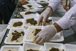 طبخ و توزیع بیش از ۱۲ هزار پرس غذای گرم در قزوین