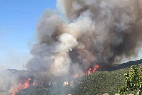 وقوع آتش سوزی گسترده در شمال لبنان