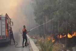 ايران تؤكد تضامنها واستعدادها لمساعدة تركيا في مكافحة الحرائق