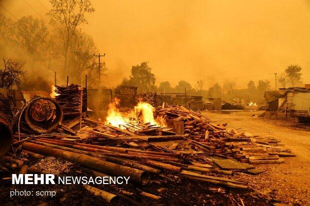 Türkiye'deki yangınlarda son durum