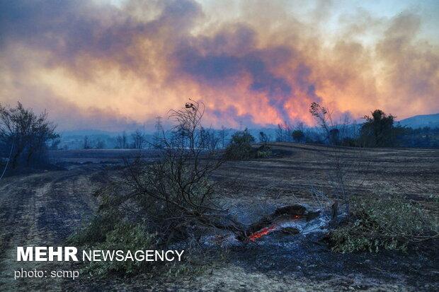 Manavgat'ta yine yangın çıktı