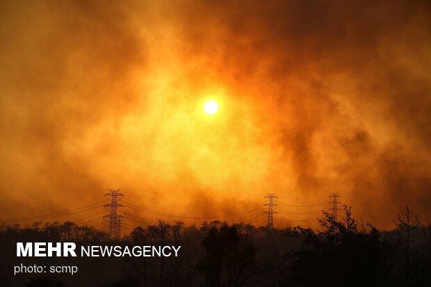 استمرار حرائق الغابات باليونان