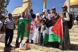 """حركة """"حماس"""" تثمن جهود الجزائر لطرد كيان الاحتلال من الاتحاد الإفريقي"""
