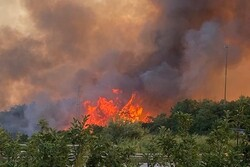 Wildfires in Italy injure five; hundreds evacuated (+VIDEO)