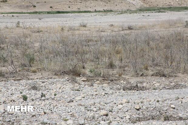 خشک شدن تنگه«کافرین» - سیمره ایلام