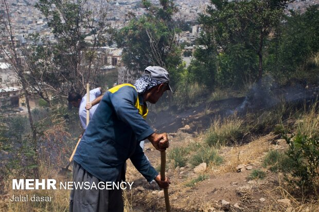 آتش سوزی پارک جنگلی توس نوذر سنندج