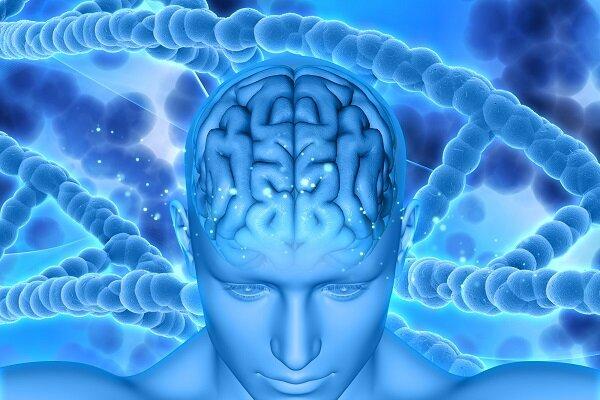 شناسایی جهشهای دی ان ای عامل سرطان مغز برای نخستین بار