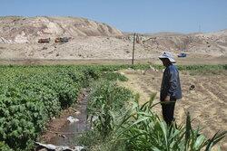 تامین حق آبه سد مارون مشکلات کشت در دهدشت غربی را مرتفع می کند