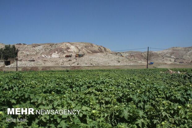 اراضی کشاورزی بدره در انتظار آب سیمره